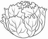 Lettuce Coloring Pages Vegetables Fruits Vegetable Drawing Leaf Fruit Colouring Printable Templates Template Preschoolactivities Orange Para Lechuga Autumn Patterns Sheets sketch template