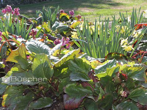 Ausbildung Garten Und Landschaftsbau Solingen by Beispiele B 252 Scher Gartenbau Landschaftsbau Solingen