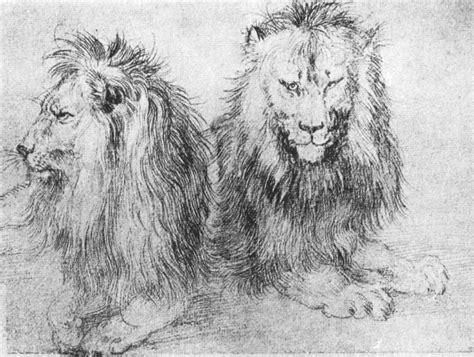 filedurer lions sketchjpg wikimedia commons