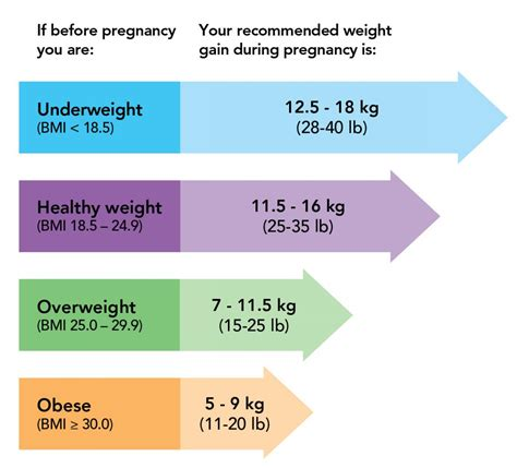 Weight Gain During Pregnancy Similacca