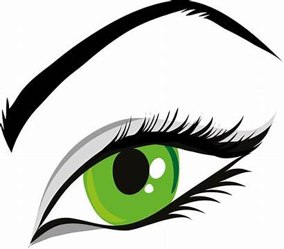 Clipart Eyes Eye Eyebrow Lady Eylashes Transparent