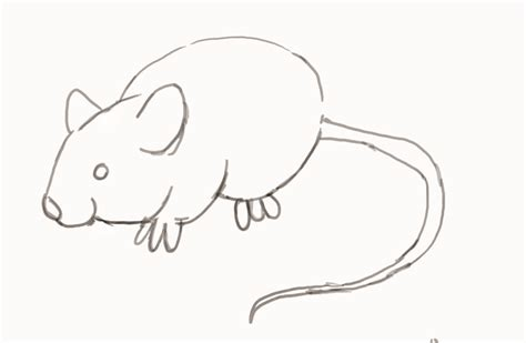 draw  mouse step  step