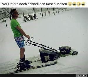 Rasenmähen Ab Wann : schnee rasen mahen ~ Watch28wear.com Haus und Dekorationen