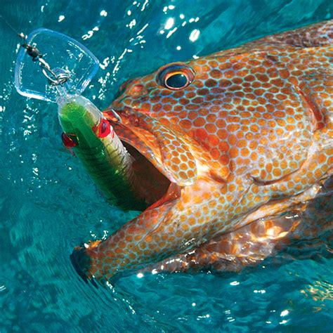 game lure trolling mirrolure grouper lures series deep fishing bait rod catching saltwater clothing fish tackle thelongfin tools