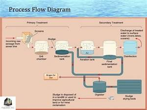 Show Of Flow Chart Of Stp