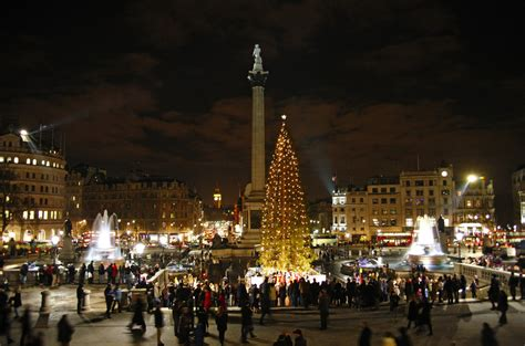 trafalgar square christmas tree guide london