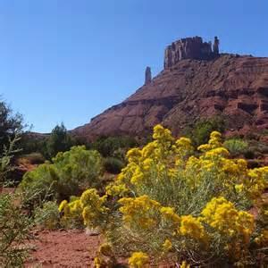 Moab Utah Trails
