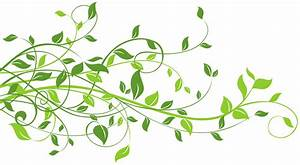 Leaf clipart png