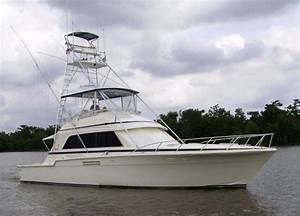 1989 Bertram 54 Convertible Yacht For Sale The Hull