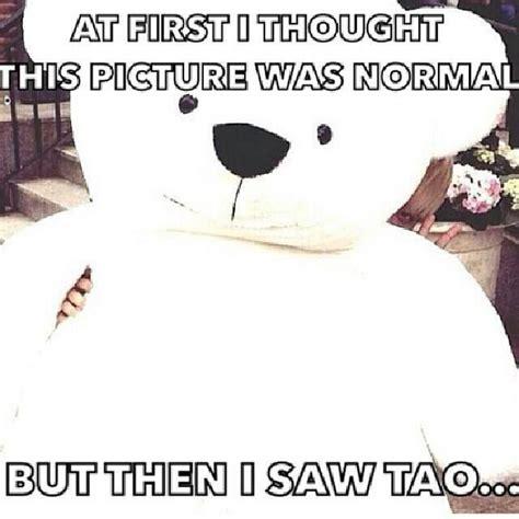 Tao Meme - 136 best z tao images on pinterest huang zi tao luhan