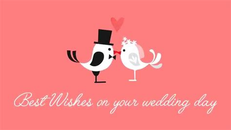 wishes   wedding day ecards  youtube