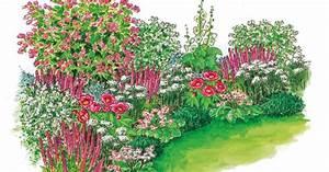 Blumenbeete Zum Nachpflanzen : zum nachpflanzen harmonische beet partie mein sch ner garten ~ Yasmunasinghe.com Haus und Dekorationen