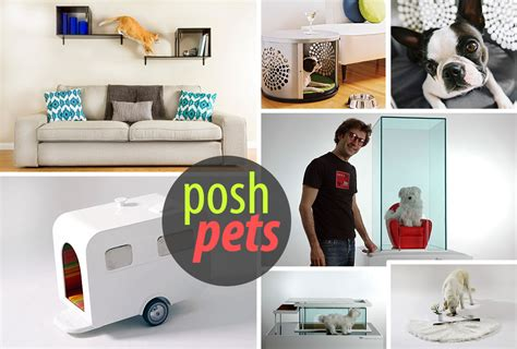 Home Design With Pets In Mind by Modern Pet Furniture Accessories For Design
