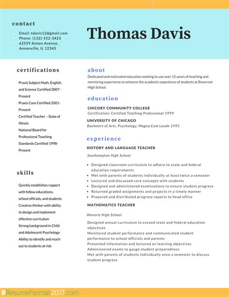 teacher professional resume format  resume format