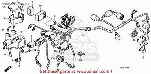 Honda Vt1100c3 Shadow Aero 1999 Usa Wire Harness  1