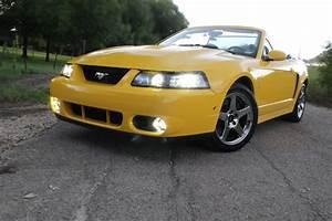 Screaming Yellow 04 Cobra Vert for sale | SVTPerformance.com