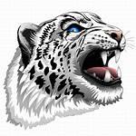 Leopard Snow Tiger Roar Vector Head African