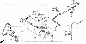 Honda Outboard Parts By Hp  U0026 Serial Range 25hp Oem Parts