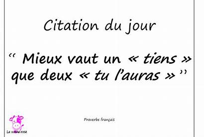Citation Jour Mai Rose Amour Anglaise Explications