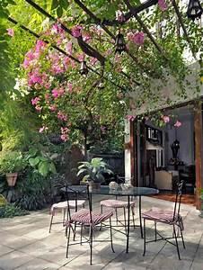 Treillis Pour Plantes Grimpantes : les 25 meilleures id es de la cat gorie plante grimpante ~ Premium-room.com Idées de Décoration