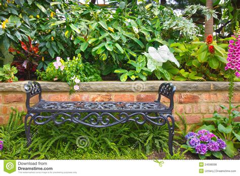 garden bench stock photo image of plants nobody chair