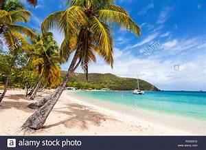 Bilder Von Palmen : idyllischen tropischen strand mit weissem sand palmen und das t rkisblaue karibische meer ~ Frokenaadalensverden.com Haus und Dekorationen