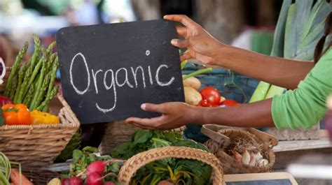 cuisine living the problems facing organic farming in india study ndtv