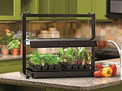 Wshgnet Blog  Homegrown Flavor From An Indoor Garden