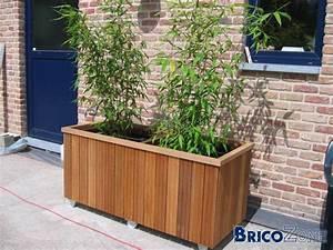 Bambou En Pot Pour Terrasse : bac a bambou pivoine etc ~ Louise-bijoux.com Idées de Décoration