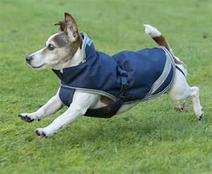 Regenmantel Für Hunde Mit Bauchschutz : bucas freedom dog rug hundedecke hundemantel regenmantel hunde 50g 55cm aynrakrereitsport ~ Frokenaadalensverden.com Haus und Dekorationen