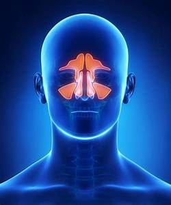 Sinusitis  Symptoms  Diagnosis  And Treatment