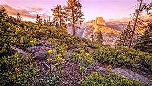 Glacier, Point, Sunset, Yosemite, National, Park, California