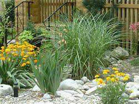 outdoor flowers rock garden designs rock garden designs