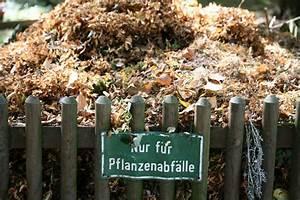 Ein Natürlicher Dünger : d nger f r ein optimales pflanzenwachstum tipps zur ~ Lizthompson.info Haus und Dekorationen