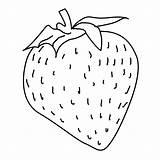 Strawberry Coloring Pages Erdbeere Malvorlagen Malvorlage Strawberries Window Fruit Von Kostenlose Drink Eat Ausmalen Zum Painting Vorlagen Fensterbilder Und Printable sketch template