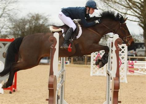 jumping ponies pony showjumping were super ride horse enough wish