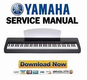Yamaha P-140   P-140s Service Manual  U0026 Repair Guide