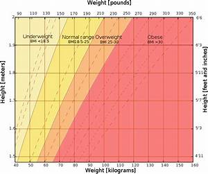 Bmi Chart For All Ages What Should I Weigh Complete Explanation