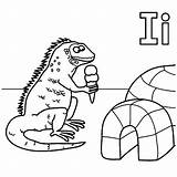 Coloring Iguana Igloo Ice Pages Cream Eat Eating Yahoo Template Results Getcolorings Printable Colorings Sheets sketch template