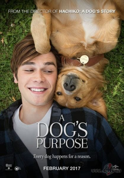 Suņa dzīves jēga (A Dog`s Purpose) | Filmas oHo.lv