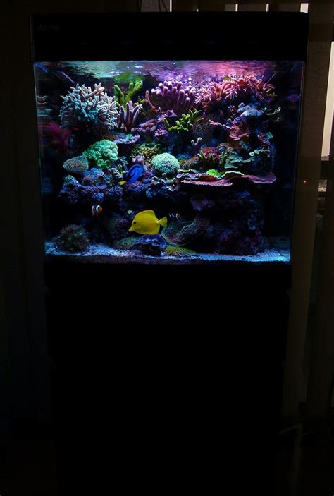 aquarium sea 130 aquarium sea 130 28 images aquarium christopher schoener sea max 130d aquarium eau de mer