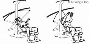 Crossbow Exercises By Weight Training Exercises Com