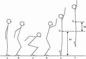 1 Stick Figure Sequence Of A Countermovement Vertical Jump