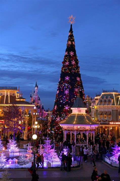 travel christmas magic  disneyland paris birmingham mail