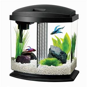 Aqueon Bettabow Aquarium Led Starter Kit  2 5 Gallon