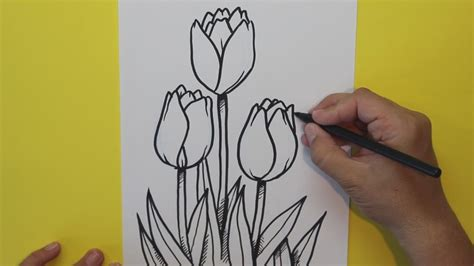 c 243 mo dibujar tulipanes flores how to draw tulips flowers youtube
