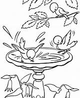 Water Drinking Coloring Pages Birds Printable Getcolorings Sheets sketch template