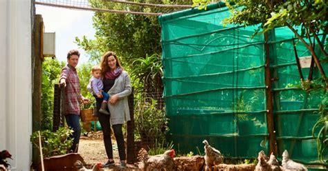 Darf Bienen Im Wohngebiet Halten by H 252 Hnerhaltung Im Eigenen Garten