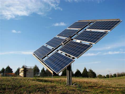 Как белянка обыкновенная помогла ученым кпд солнечных батарей удвоить блог компании хабр