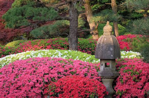 Japanischer Garten Vorgarten by Hours Admission Portland Japanese Garden